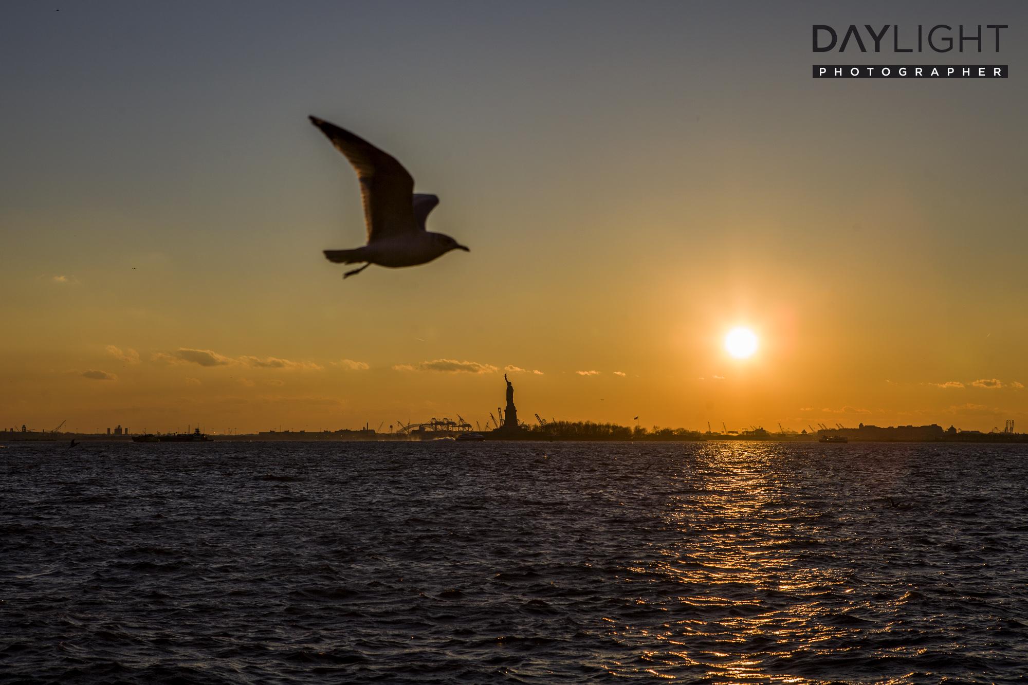 new york fotograf